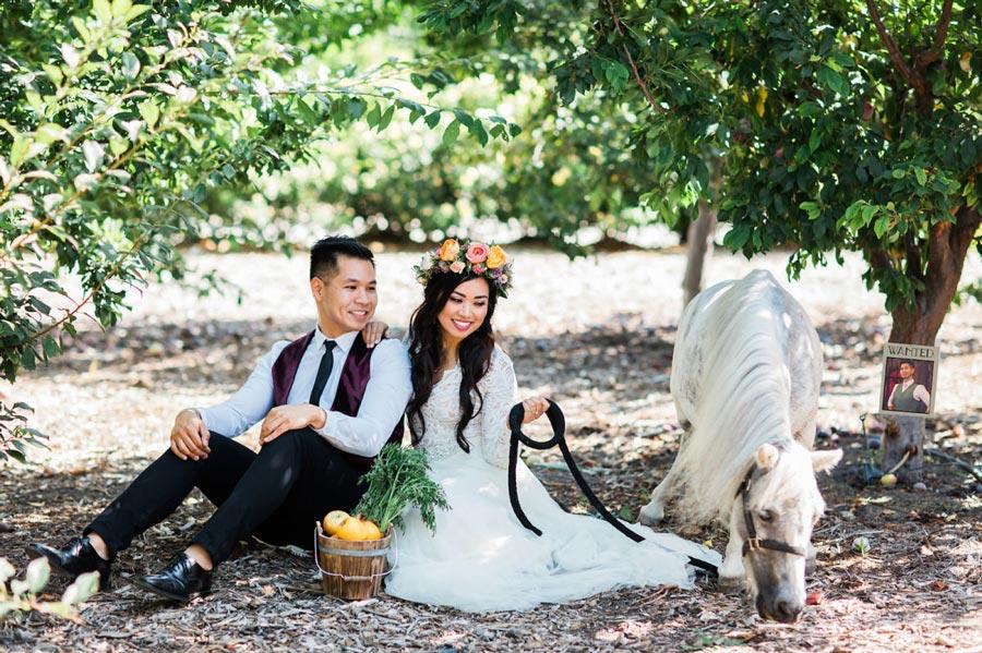 как организовать свадьбу в стиле рапунцель 6