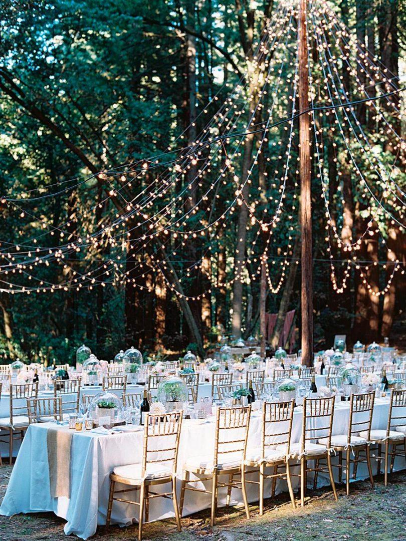 уютная свадьба на природе дневник невесты 2