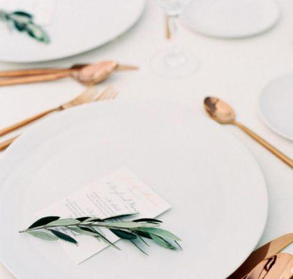 Вегетарианская свадьба — дневник невесты