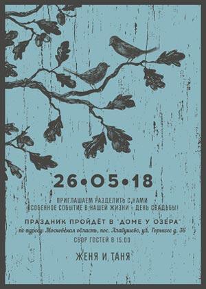 свадьба между москвой и петербургом дневник невесты 10