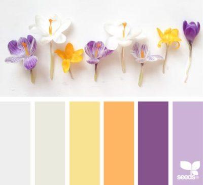 свадьба в фиолетовом цвете 13