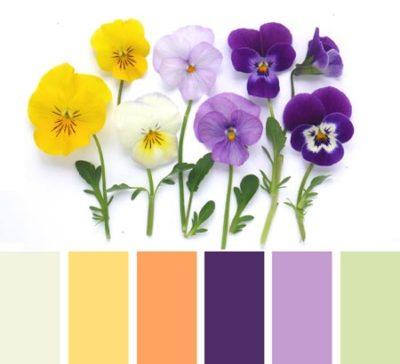свадьба в фиолетовом цвете 14