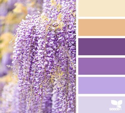 свадьба в фиолетовом цвете 15