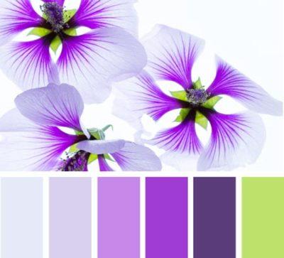 свадьба в фиолетовом цвете 17