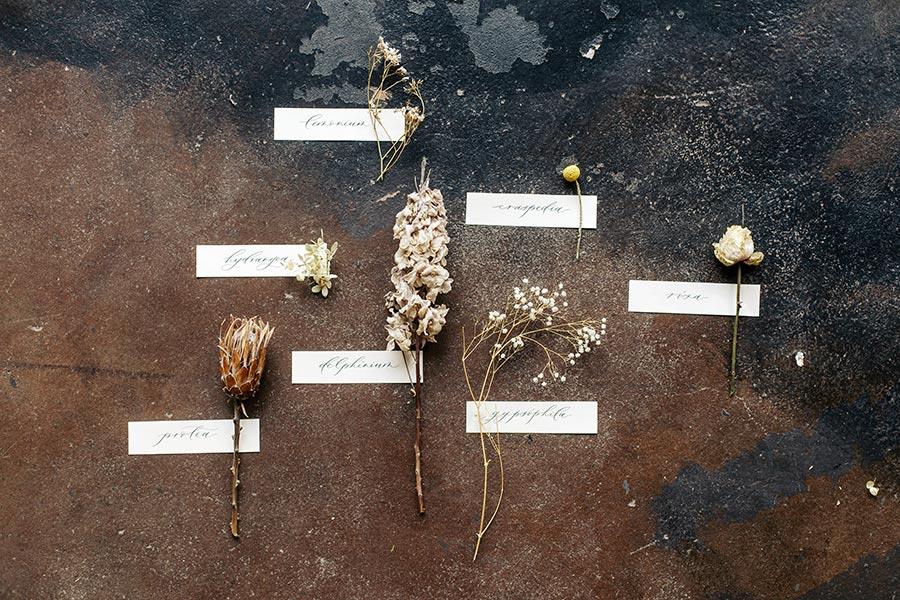 неувядаяющая красота съемка с сухоцветами 7