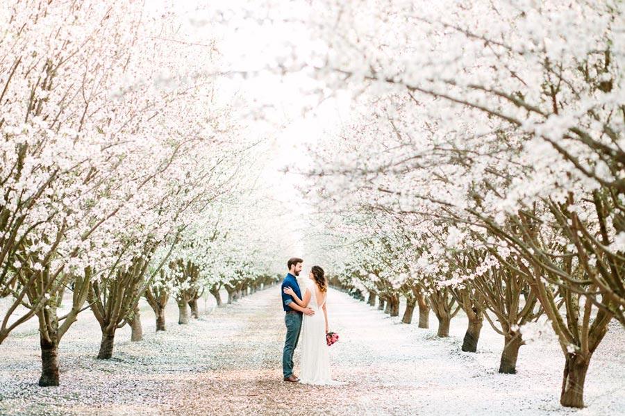 полный гид по свадьбе на природе 2