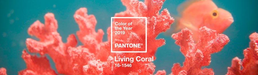 цвет года 2019 с какими оттенками сочетать 1