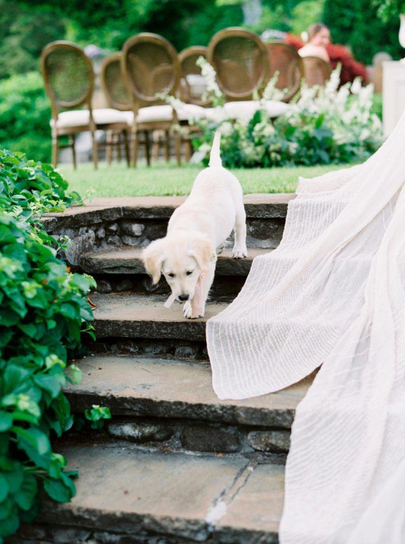 как подготовка к свадьбе похожа на сооружение дома 9