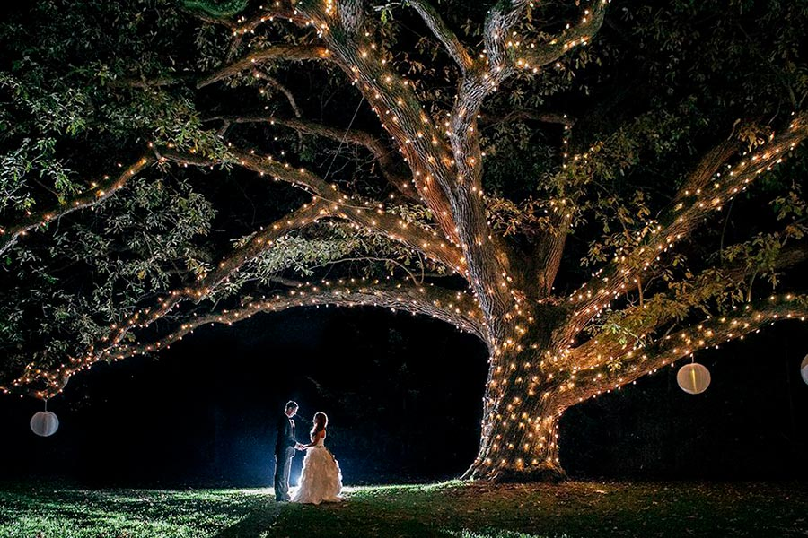 вечерняя свадебная церемония 2