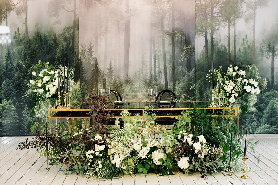 магический лес насти и кирилла 16